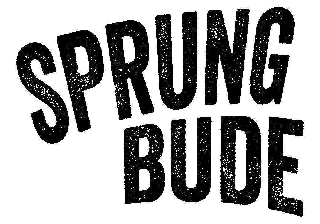 logo sprungbude